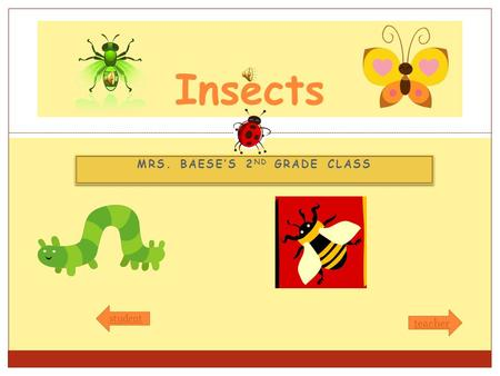 MRS. BAESE'S 2 ND GRADE CLASS Insects student teacher.
