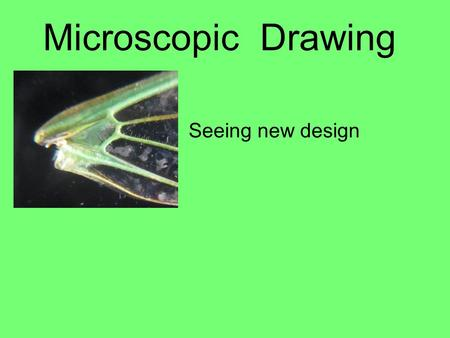 Microscopic Drawing Seeing new design. Why draw using a microscope? Artists have the unique ability to focus on desired details and exclude unwanted information.