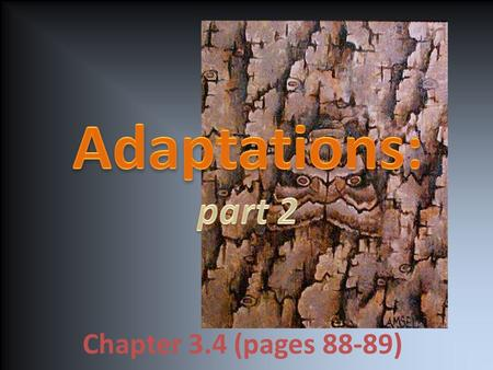 Chapter 3.4 (pages 88-89). Key concepts: Identify three kinds of adaptations that help organisms survive. Describe the four parts of natural selection.