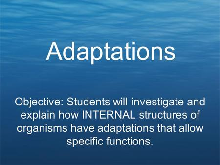 Adaptations Objective: Students will investigate and explain how INTERNAL structures of organisms have adaptations that allow specific functions.