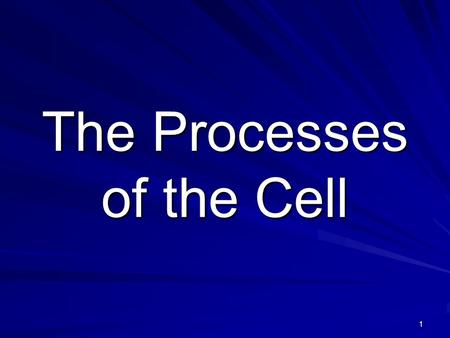 1 The Processes of the Cell. 2 What has to happen to your cells in order to grow from a baby into an adult?