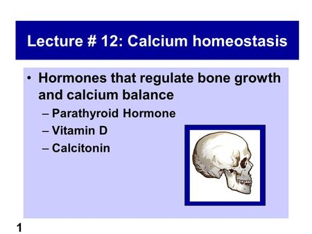 1 Lecture # 12: Calcium homeostasis Hormones that regulate bone growth and calcium balance –Parathyroid Hormone –Vitamin D –Calcitonin.