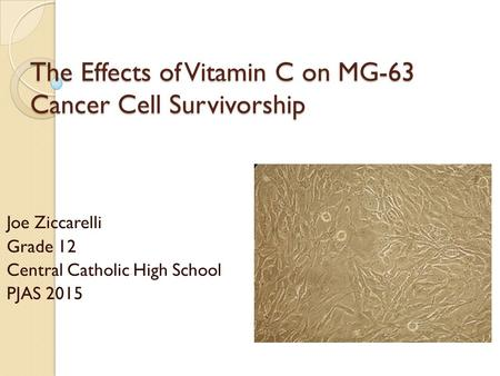The Effects of Vitamin C on MG-63 Cancer Cell Survivorship Joe Ziccarelli Grade 12 Central Catholic High School PJAS 2015.