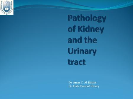 Dr. Amar C. Al-Rikabi Dr. Hala Kassouf Kfoury. Objectives 1- Introduction to the renal pathology 2- Cystic diseases 3- Acute Kidney Injury 4- Definitions,