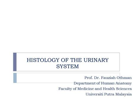 HISTOLOGY OF THE URINARY SYSTEM