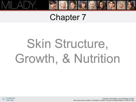 Chapter 7 Skin Structure, Growth, & Nutrition Learning Objectives Describe the structure and composition of the skin. List the six functions of the skin.