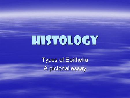 Types of Epithelia A pictorial essay
