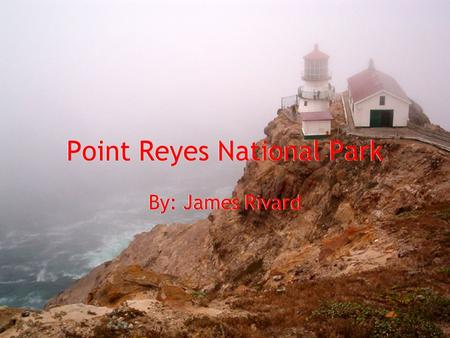 Point Reyes National Park By: James Rivard. Year Of Establishment Point Reyes, north of San Francisco California, was named a National Park on September.