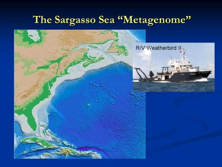 "The Sargasso Sea ""Metagenome"" R/V Weatherbird II."