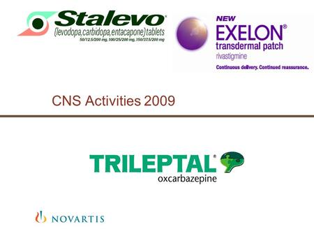 CNS Activities 2009. Exelon 2009 Brand Plan | Mircea Moraru | July 2008 Sumar Activitati 2009.
