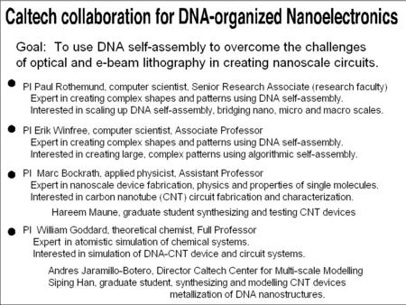 Caltech collaboration for DNA-organized Nanoelectronics The Caltech DNA- nanoelectronics team.