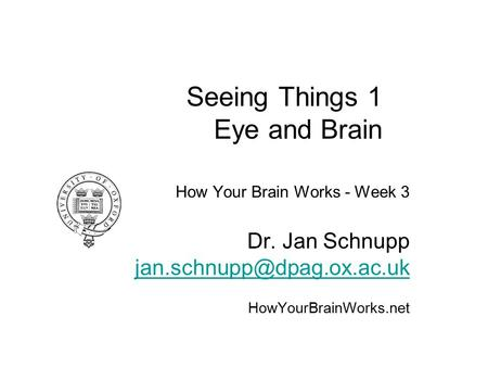 Seeing Things 1 Eye and Brain