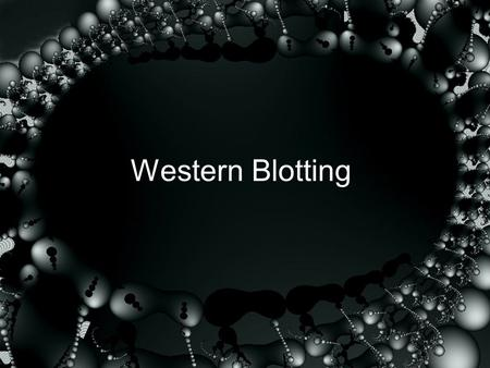 Western Blotting. Western blotting/Immunoblotting Technique for detecting specific proteins separated by electrophoresis by use of labeled antibodies.