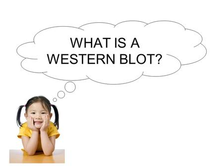 WHAT IS A WESTERN BLOT?.