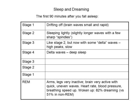 Sleep and Dreaming The first 90 minutes after you fall asleep: Stage 1Drifting off (brain waves small and rapid) Stage 2Sleeping lightly (slightly longer.