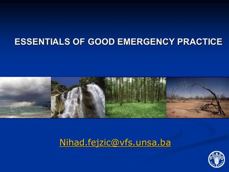 ESSENTIALS OF GOOD EMERGENCY PRACTICE