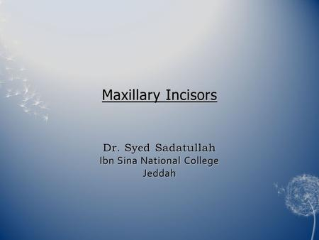 Introduction Maxillary incisors are four in number Maxillary central incisor and lateral are similar in anatomy and complement each other in function.