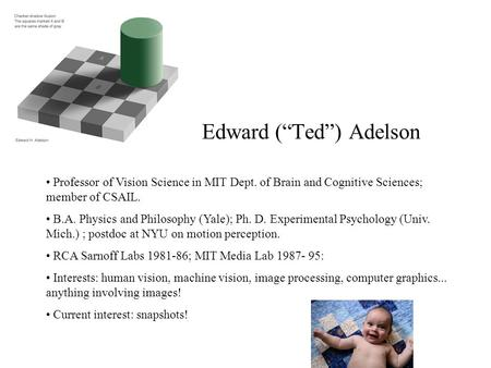 "Edward (""Ted"") Adelson Professor of Vision Science in MIT Dept. of Brain and Cognitive Sciences; member of CSAIL. B.A. Physics and Philosophy (Yale); Ph."