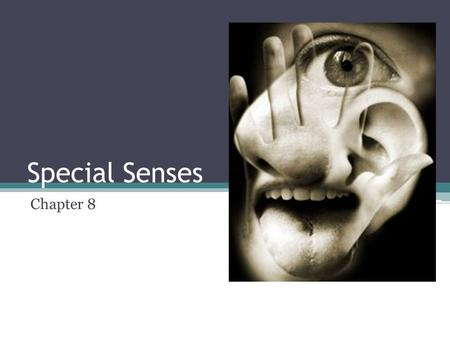 Special Senses Chapter 8. Special senses ▫Smell ▫Taste ▫Sight ▫Hearing ▫Equilibrium.
