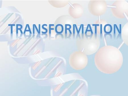 Transformation is the process of introducing DNA into bacterial cells.