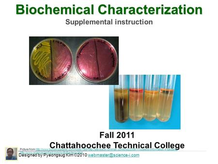 Biochemical Characterization