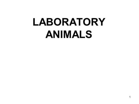 1 LABORATORY ANIMALS. 2 Mouse – most frequently used. Pharmacology, genetics of mammals, virology, models of human diseases (mutant strains, transgenic.