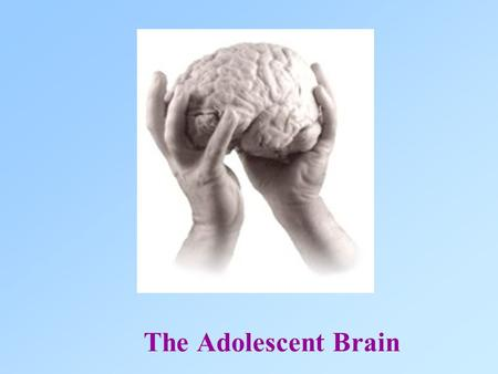 "The Adolescent Brain. Matt, 16, can't remember anything Bethany,18 ""Knows"" Everything."