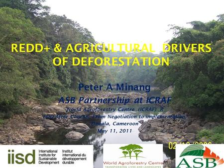 REDD+ & AGRICULTURAL DRIVERS OF DEFORESTATION Peter A Minang ASB Partnership at ICRAF World Agroforestry Centre (ICRAF) R EDD After Cancun: From Negotiation.