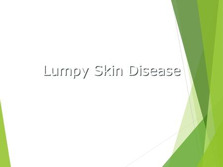 Lumpy Skin Disease. Overview  Organism  Economic Impact  Epidemiology  Transmission  Clinical Signs  Diagnosis and Treatment  Prevention and Control.