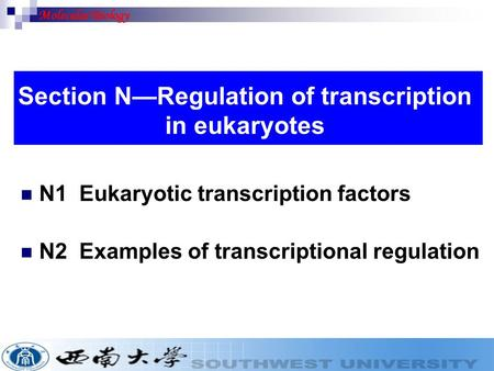 N1 Eukaryotic transcription factors N2 Examples of transcriptional regulation Section N—Regulation of transcription in eukaryotes Molecular Biology.