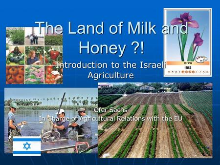 The Land of Milk and Honey ?! Introduction to the Israeli Agriculture Ofer Sachs In Charge of Agricultural Relations with the EU.