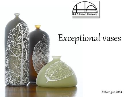 Catalogue 2014 Exceptional vases. The most universal and loveliest present are flowers The vase is very original and impressive accent of the interior.