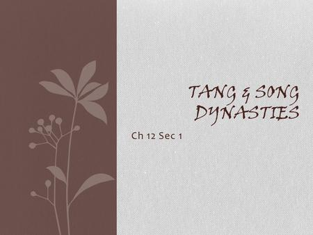 Ch 12 Sec 1 TANG & SONG DYNASTIES. 唐朝 Tang Dynasty (618-907 CE) A Golden Age of Chinese Civilization.