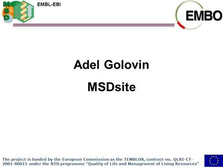 EMBL-EBI Adel Golovin MSDsite The project is funded by the European Commission as the TEMBLOR, contract-no. QLRI-CT- 2001-00015 under the RTD programme.