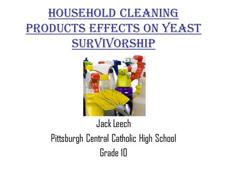 Household Cleaning Products Effects On Yeast Survivorship Jack Leech Pittsburgh Central Catholic High School Grade 10.