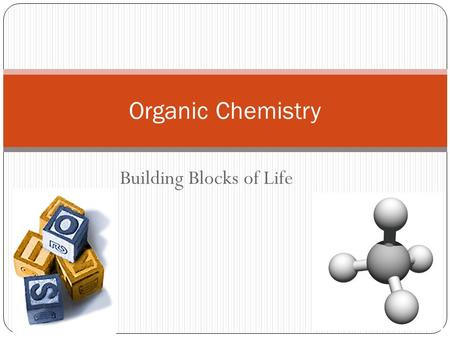 Building Blocks of Life 2007-2008 Organic Chemistry.