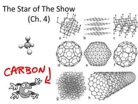 The Star of The Show (Ch. 4). Why study Carbon? All of life is built on carbon Cells – ~72% H 2 O – ~25% carbon compounds carbohydrates lipids proteins.