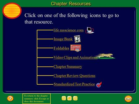 To return to the chapter summary click Escape or close this document. Chapter Resources Click on one of the following icons to go to that resource. life.msscience.com.