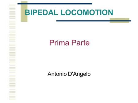 BIPEDAL LOCOMOTION Antonio D'Angelo Prima Parte. BIPEDAL WALKING In recent years the interest to study the bipedal walking has been growing. Also the.
