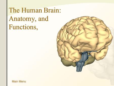 The Human Brain: Anatomy, and Functions,. Main Menu Brain Anatomy Brain Functions.