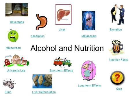 Alcohol and Nutrition Beverages Brain Absorption Liver Liver Deterioration Excretion Metabolism Quiz Malnutrition Nutrition Facts Short-term Effects Long-term.