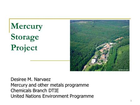 1 Mercury Storage Project Desiree M. Narvaez Mercury and other metals programme Chemicals Branch DTIE United Nations Environment Programme.