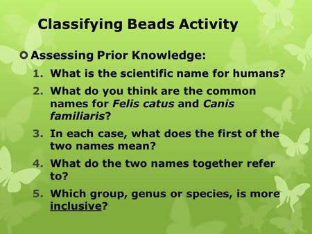 Classifying Beads Activity  Assessing Prior Knowledge: 1.What is the scientific name for humans? 2.What do you think are the common names for Felis catus.