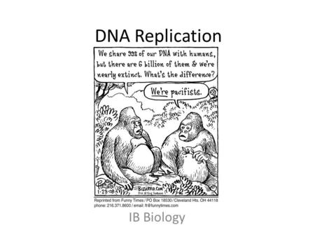 DNA Replication IB Biology. Key Words adenine nitrogenous base anti-parallel nucleic acid nucleotide covalent bond cytosine Pentose DNA polymerase deoxyribonucleic.