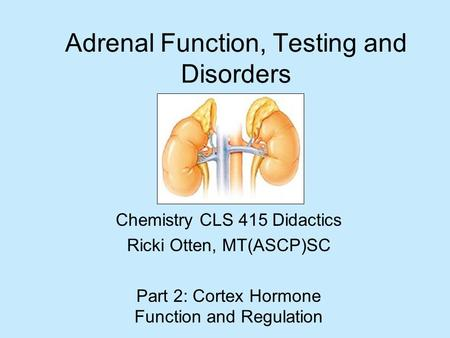 Adrenal Function, Testing and Disorders Chemistry CLS 415 Didactics Ricki Otten, MT(ASCP)SC Part 2: Cortex Hormone Function and Regulation.