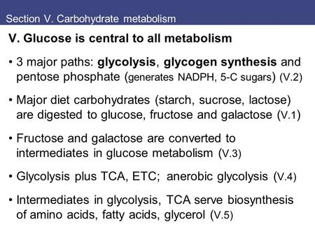 Section V. Carbohydrate metabolism V. Glucose is central to all metabolism 3 major paths: glycolysis, glycogen synthesis and pentose phosphate ( generates.