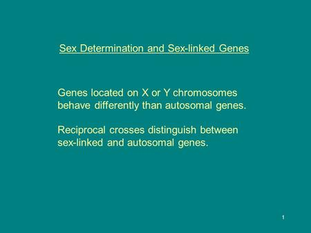 1 Sex Determination and Sex-linked Genes Genes located on X or Y chromosomes behave differently than autosomal genes. Reciprocal crosses distinguish between.