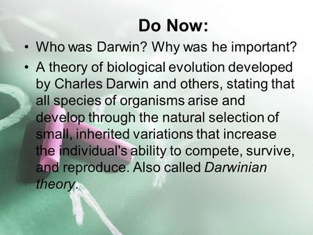 Do Now: Who was Darwin? Why was he important? A theory of biological evolution developed by Charles Darwin and others, stating that all species of organisms.
