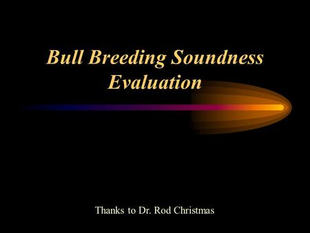 Bull Breeding Soundness Evaluation Thanks to Dr. Rod Christmas.
