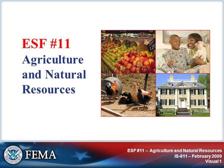 ESF #11 – Agriculture and Natural Resources IS-811 – February 2009 Visual 1 Agriculture and Natural Resources ESF #11.
